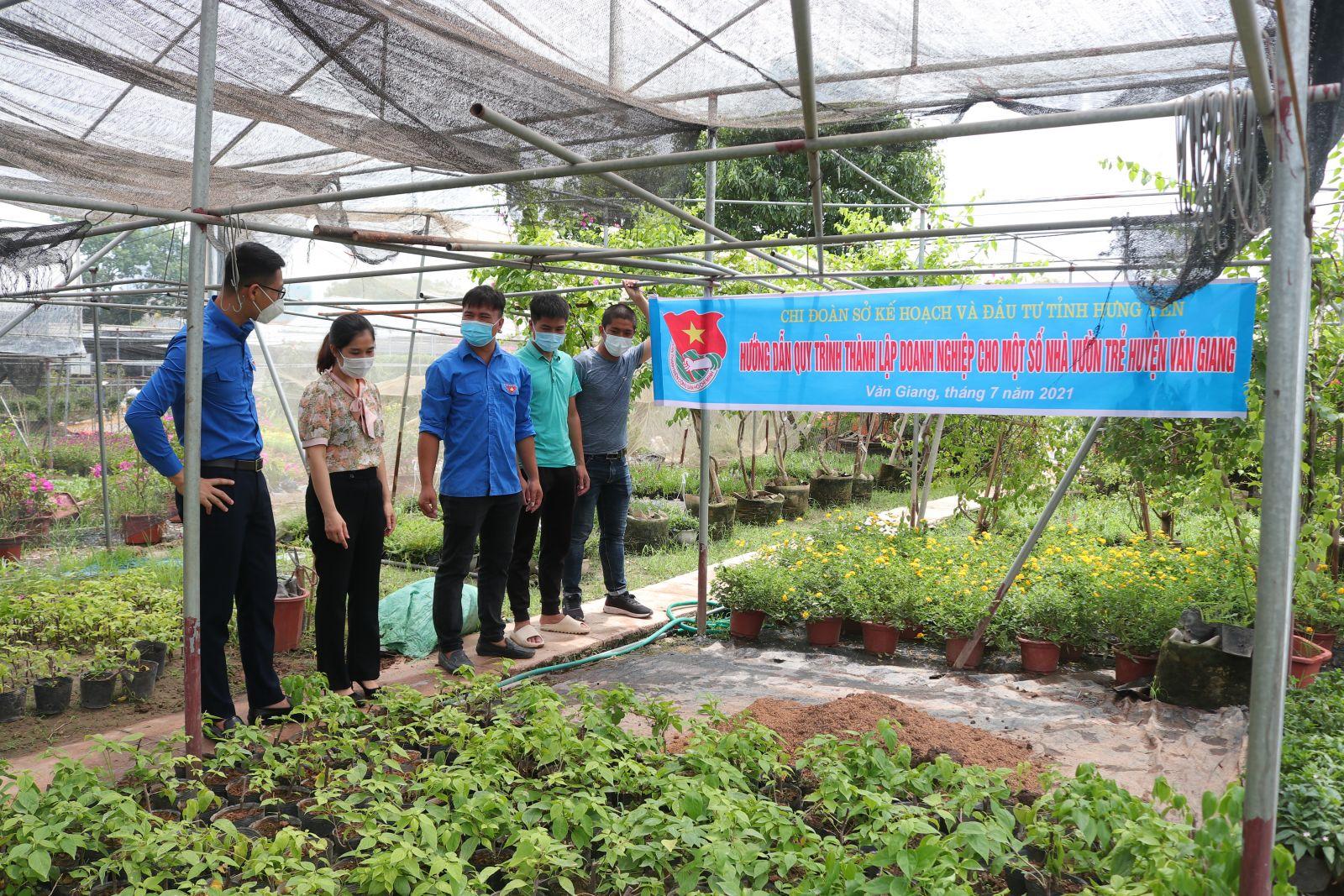 Đoàn viên, thanh niên Sở Kế hoạch và Đầu tư tỉnh hướng dẫn quy trình thành lập Doanh nghiệp cho một số nhà vườn trẻ tại huyện Văn Giang