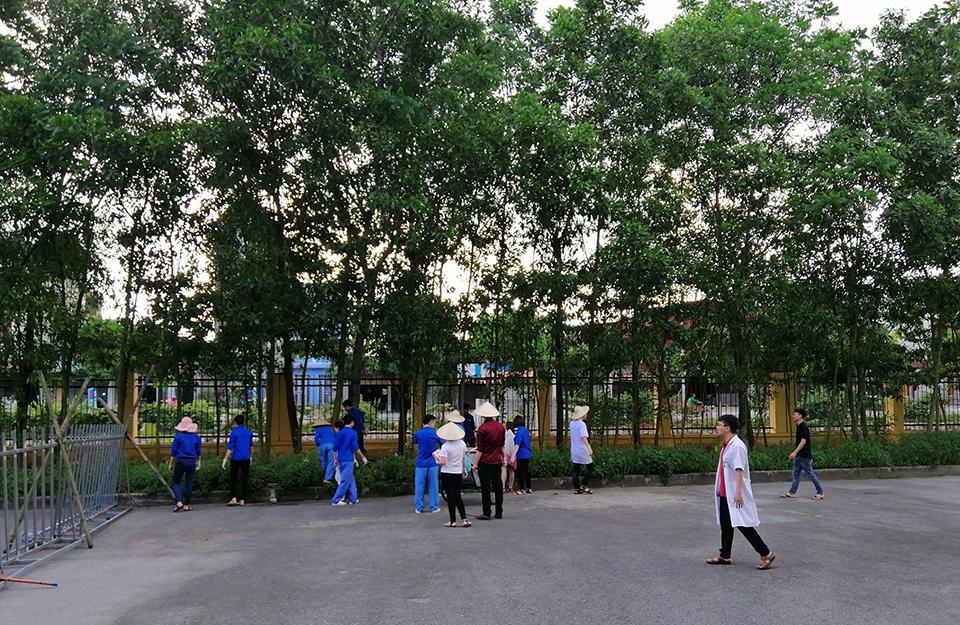 """Đoàn trường Cao đẳng Y tế đảm nhận Công trình, phần việc thanh niên-  Trồng và chăm sóc """"Vườn cây thuốc nam"""" năm 2019"""