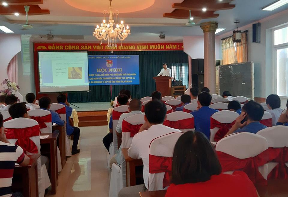 Hội nghị tập huấn hợp tác xã, giải pháp phát triển sản xuất theo chuỗi giá trị cho đoàn viên thanh niên các tổ hợp tác, hợp tác xã, các mô hình kinh tế tập thể tỉnh Hưng Yên năm 2019