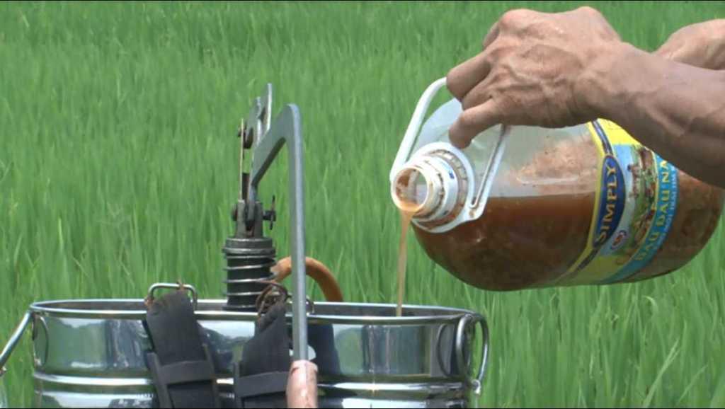 Kỹ thuật sản xuất chế phẩm thảo mộc trừ sâu bệnh